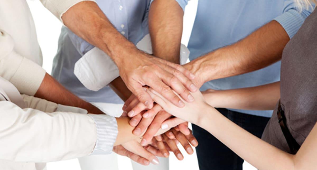 Organisation_mitwirken