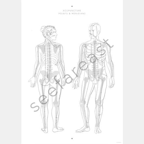 Poster: Akupunktur Poster